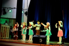 festival-musikalisches-regensburg-12_20141009_1773507866